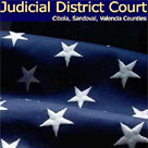 Thirteenth District Court web and database development